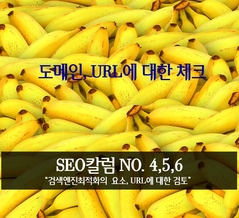 seo칼럼, 도메인 체크