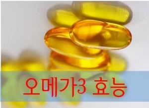 오메가3효능